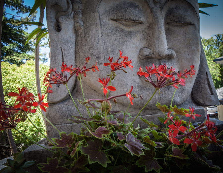 Your Yoga blog by The Yoga Garden. Dirgha three part breath post